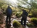 walking in the stream.jpg
