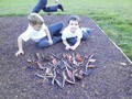 Making firework pictures in Outdoor learning 2.JPG