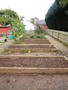 allotment-b-web.jpg