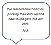 Jack sound.PNG