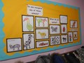 Mrs Hewett's Class - Animals
