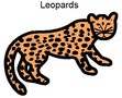 Leopards symbol.jpg