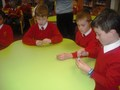Science workshops website8.jpg