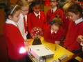 Science workshops website12.jpg