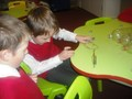 Science workshops website15.jpg