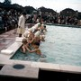swimming pool opening.JPG