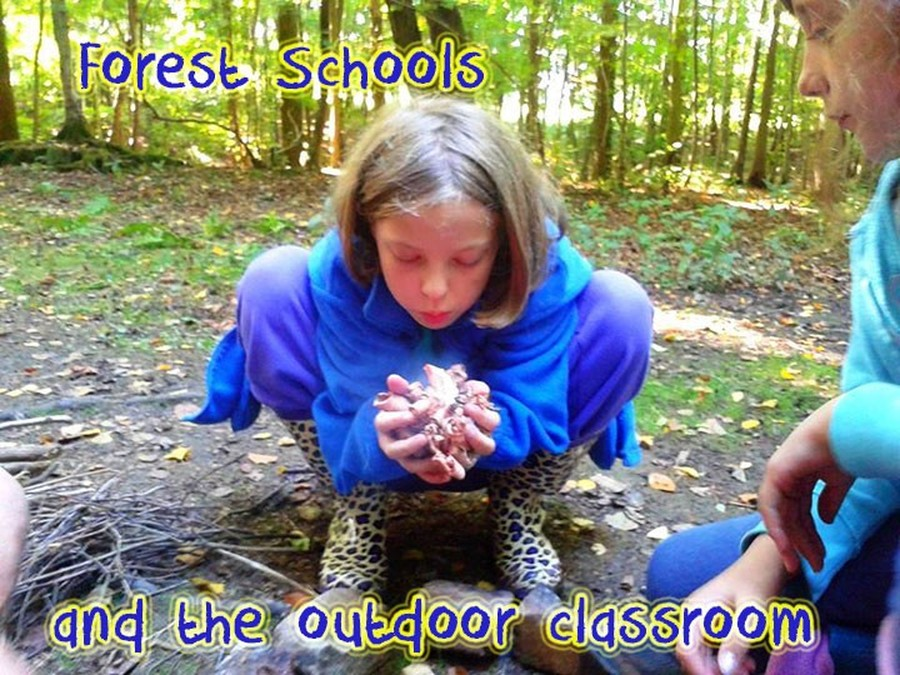 Find out about the Outdoor Curriculum