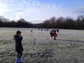 Exploring the frozen field.JPG