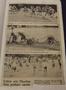 News 1959 & 1960s (16).png