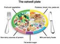 the eatwell plate.jpg