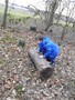 Rolling the log to use as a bench.JPG