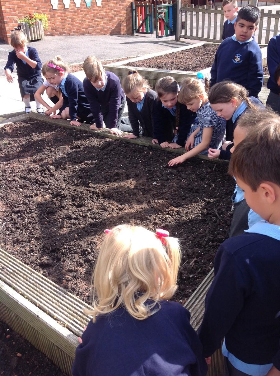 parochial cofe primary and nursery school  ashton