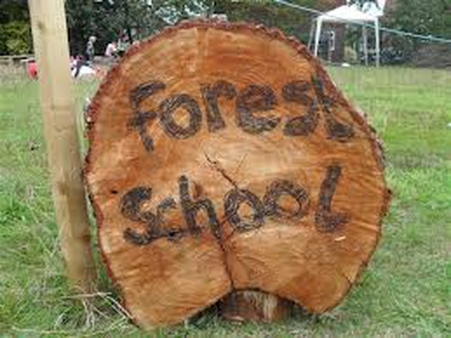 Click here to find out what we have been doing in forest schools