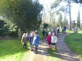 A local walk looking and listening for signs of springtime.