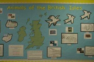 Animals of Britain.JPG