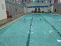 swimming 019.JPG