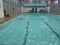 swimming 022.JPG