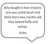 Aisha chicks.PNG
