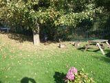 Nature Garden 2<br>