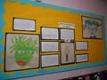 Mrs Hewett's Class Medusa