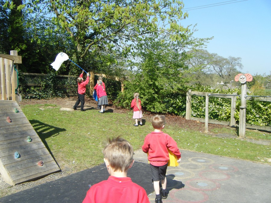 Rabbits class 'catching bugs'