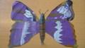 yr 5 butterflies (1).JPG