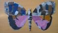 yr 5 butterflies (3).JPG