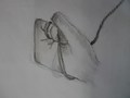 Yr 7 hand drawings (1).JPG
