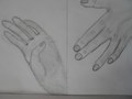 Yr 7 hand drawings (2).JPG