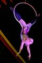 PTA Circus 01-45.jpg