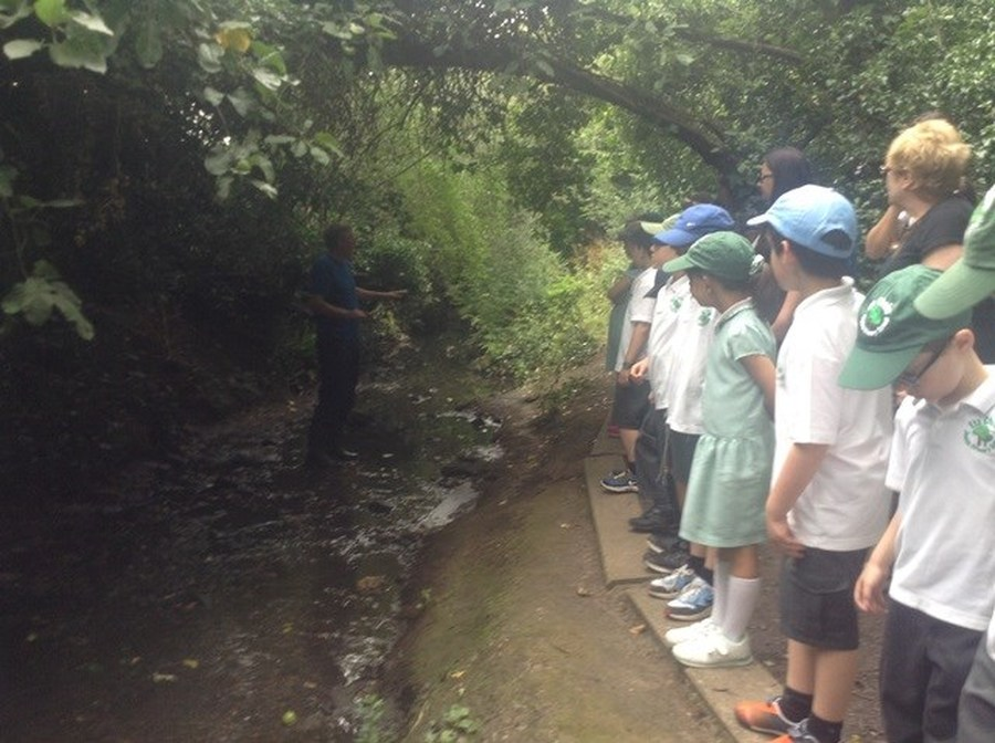 Year 2's Trip to the Welsh Harp 2015
