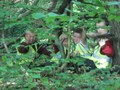 Gruffalo hunt 060.jpg