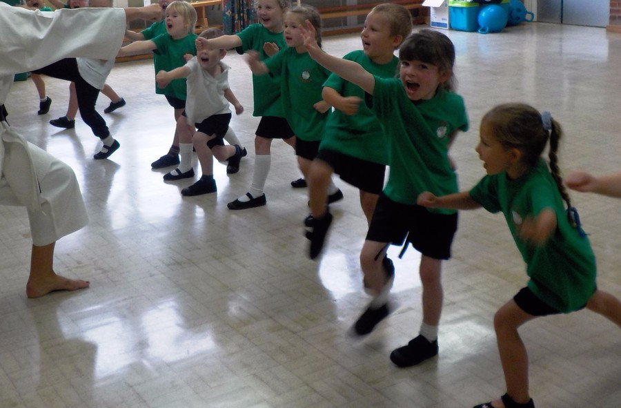 Class 1 Karate