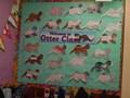 Sea Otter's Class