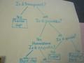 Science Properties on matirials (12).JPG