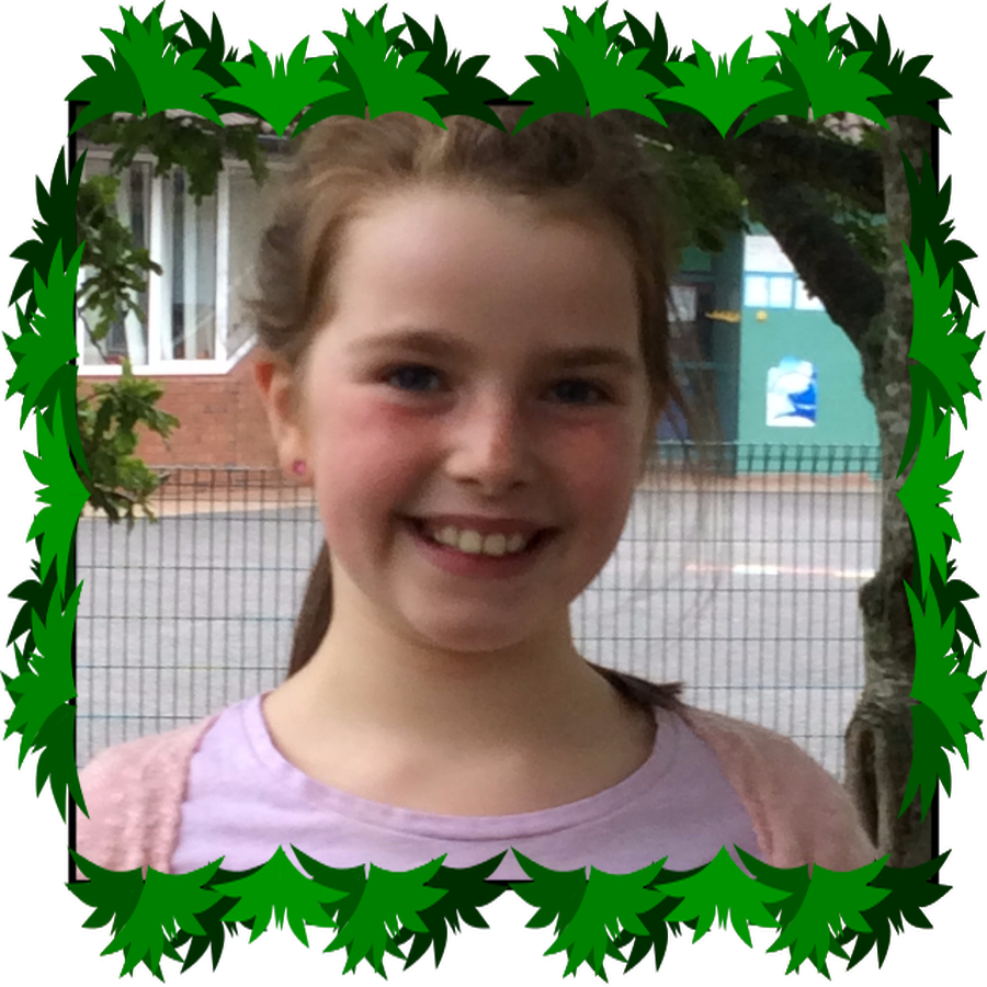 Grace P5  ECO Warrior