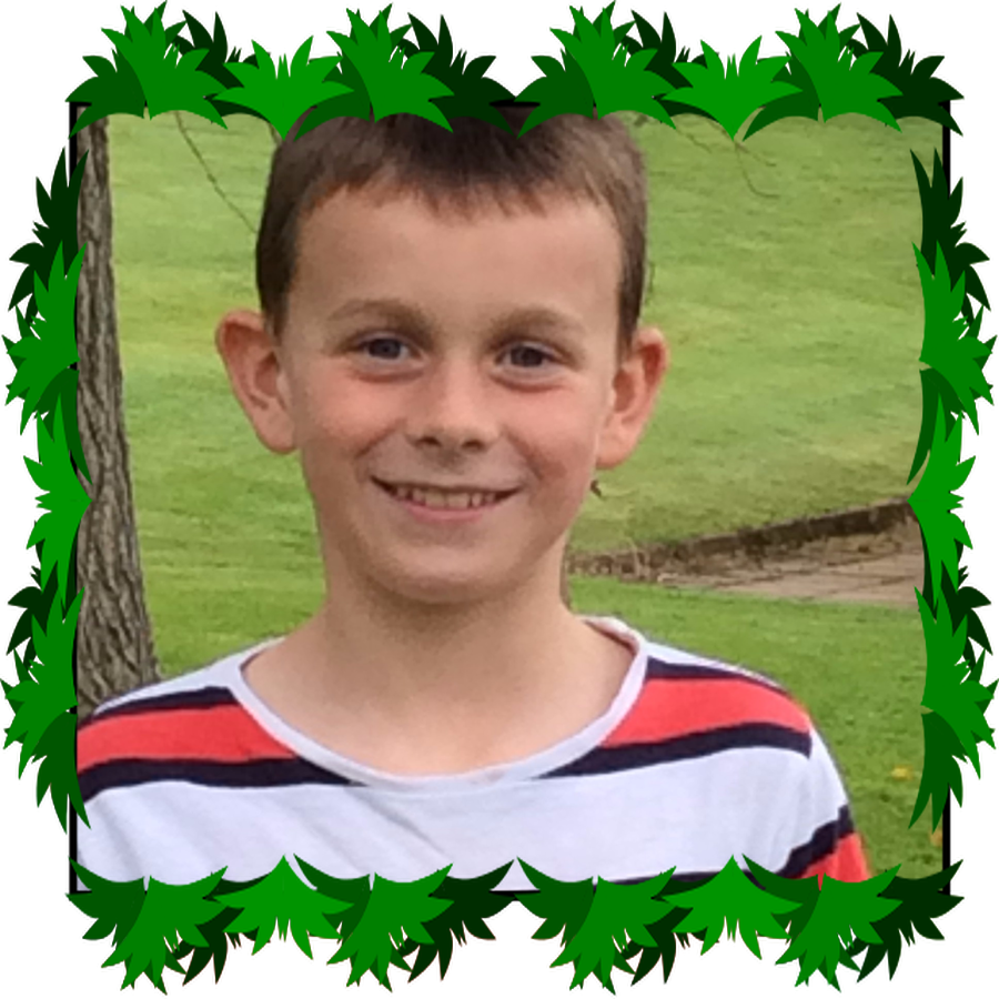 Andrew P6 ECO Warrior