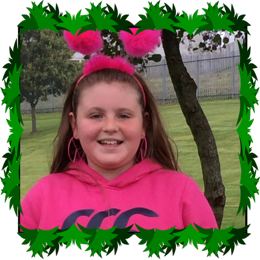Ashton P7 ECO Warrior/ICT