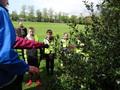 forest schools 2013 week one 009.JPG