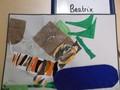 Tiger art (2).JPG