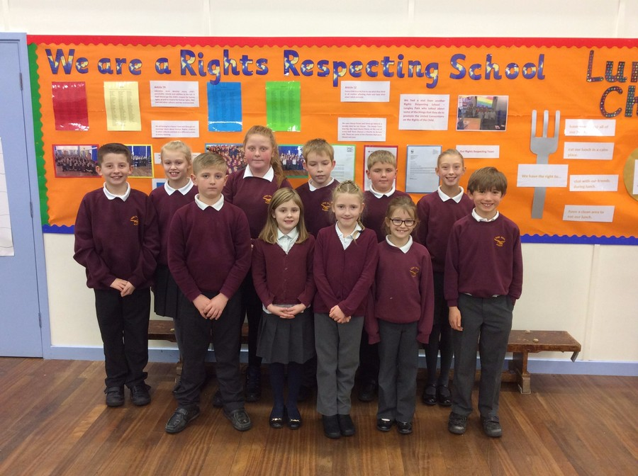 Vane Road Rights Respecting Team 2015 - 2016