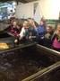 Photos from Mrs Tohill's iPad 4 - Dec '15 419.JPG