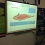 Photos from Mrs Tohill's iPad 4 - Dec '15 538.JPG