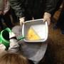 Photos from Mrs Tohill's iPad 4 - Dec '15 601.JPG