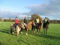 horse_riding1.jpg