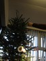 christmas tree decorations (42).JPG