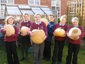 Pumpkins Oct 10.JPG