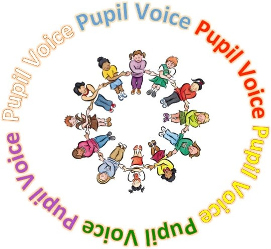 Image result for pupil voice