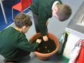 planting bulbs (1).JPG