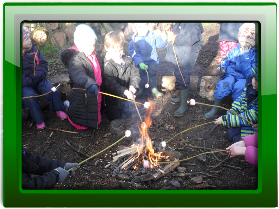 Click on the picture to discover more about forest school